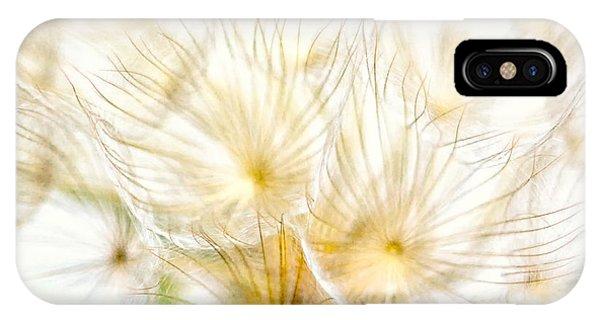 Soft Focus iPhone Case - Dandelion by Stelios Kleanthous