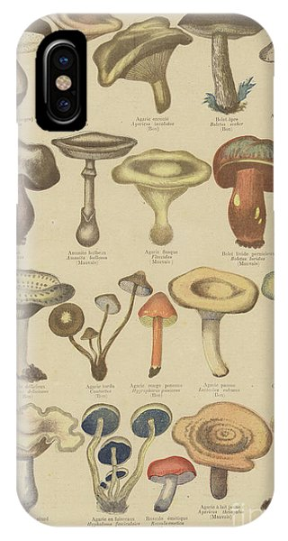 Edible And Poisonous Mushrooms IPhone Case