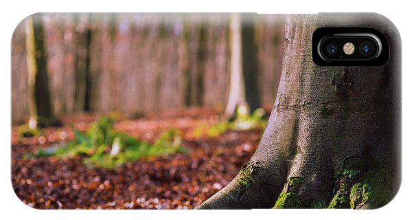IPhone Case featuring the photograph Forest Floor by Will Gudgeon