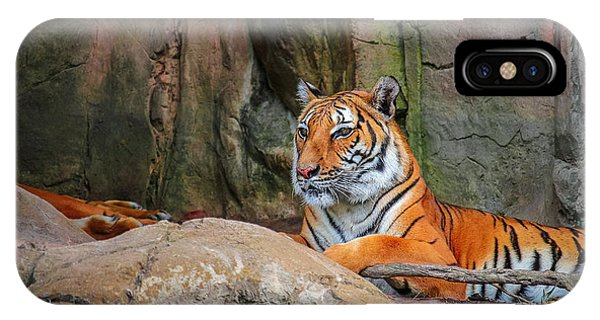 Fort Worth Zoo Tiger IPhone Case
