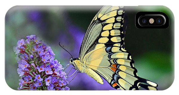 Giant Swallowtail IPhone Case