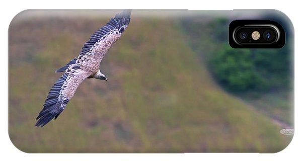 Griffon Vulture Flying, Drome Provencale, France IPhone Case