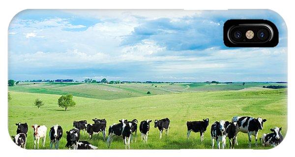 Cow iPhone X Case - Happy Cows by Todd Klassy