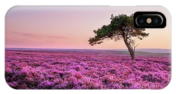 Upland iPhone Case - Heather At Sunset  by Janet Burdon