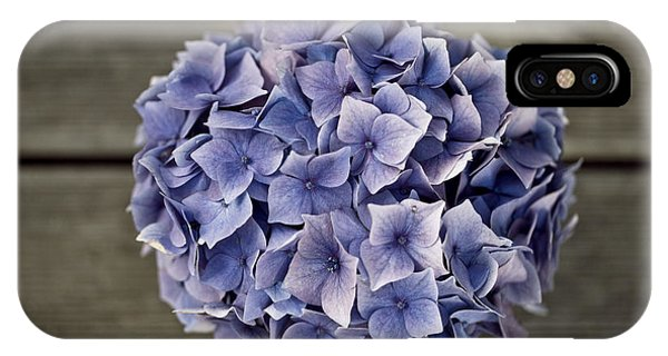 Metal iPhone Case - Hortensia Flowers by Nailia Schwarz