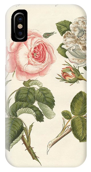 Rosa iPhone Case - Kinds Of Roses by German School