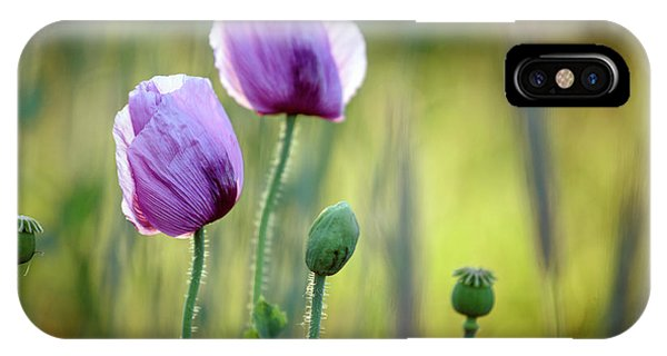Bloom iPhone Case - Lilac Poppy Flowers by Nailia Schwarz