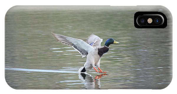 IPhone Case featuring the photograph Mallard Duck Male by Margarethe Binkley