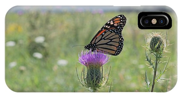 Mountain Meadow Monarch IPhone Case