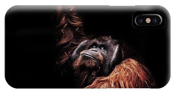 Orangutan IPhone Case