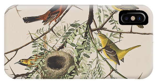 Orchard iPhone Case - Orchard Oriole by John James Audubon