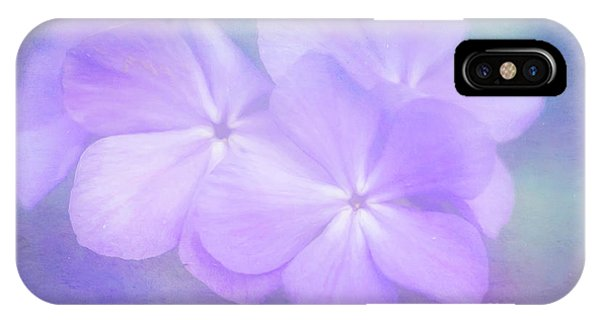 Phlox In The Evening Light IPhone Case
