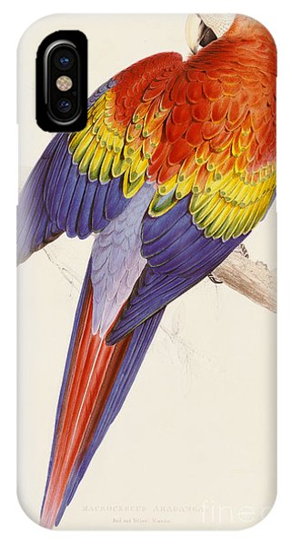 Red And Yellow Macaw IPhone Case