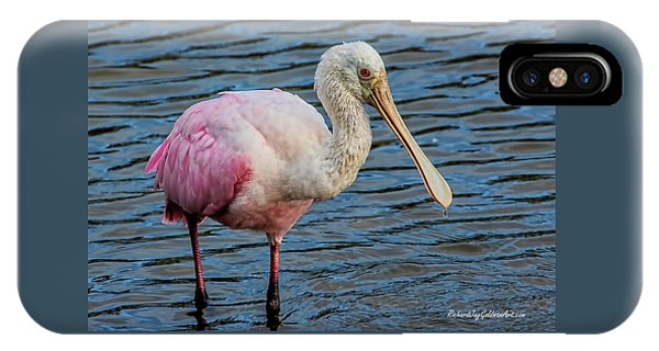Roseate Spoonbill 1 IPhone Case