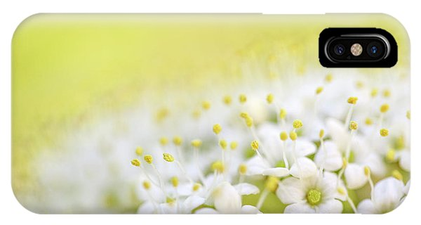 Growth iPhone Case - Spring Flowers by Nailia Schwarz