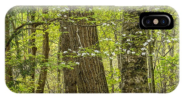 dogwood tree iphone case spring woodland dogwood in bloom by thomas r fletcher