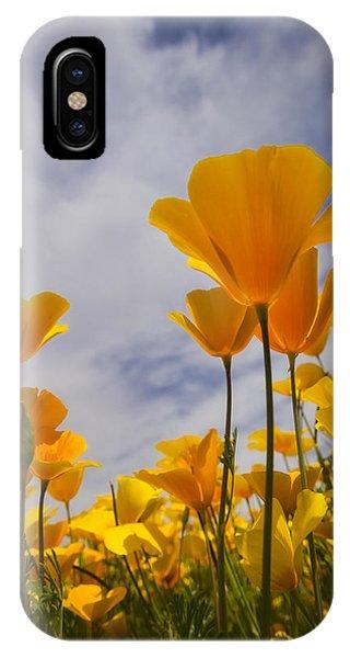 Springtime Poppies  IPhone Case