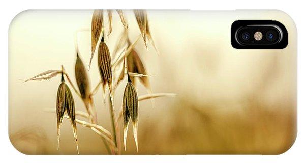 Plant iPhone Case - Summer Oat by Nailia Schwarz