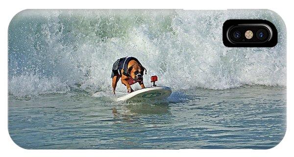 Surfing Dog IPhone Case