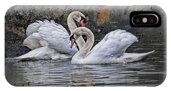 Swan iPhone Case - Tango Of The Swans by Joachim G Pinkawa