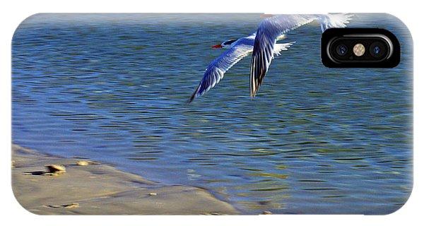 2 Terns In Flight IPhone Case