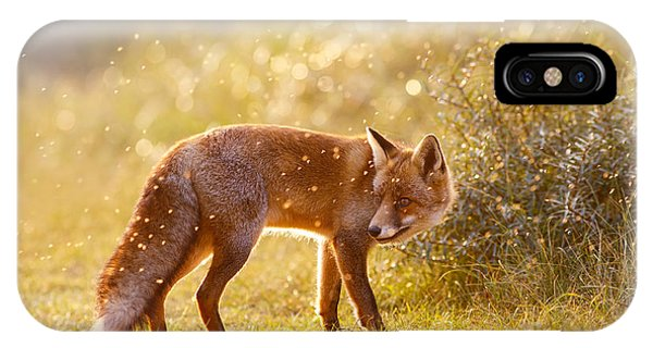 Fox iPhone Case - The Fox And The Fairy Dust by Roeselien Raimond