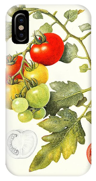Food iPhone Case - Tomatoes by Margaret Ann Eden