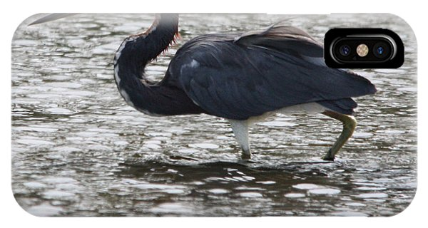Tricolored Heron IPhone Case