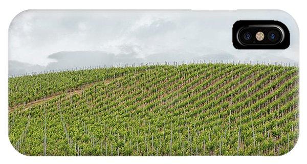 Vineyard In Sardinia IPhone Case