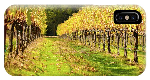 Vineyard In The Fall IPhone Case