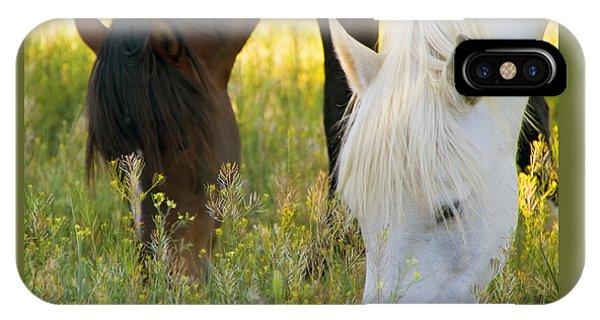 Wild Mustang Horses IPhone Case
