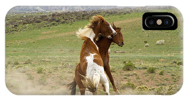 Wild Mustang Stallions Fighting IPhone Case