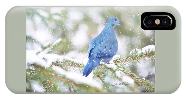 Winter Birds IPhone Case
