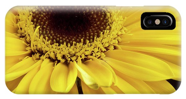 Yellow Gerbera Daisy IPhone Case