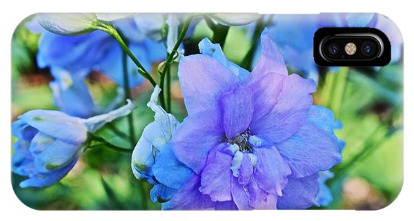 2015 Mid September At The Garden Larkspur 2 IPhone Case