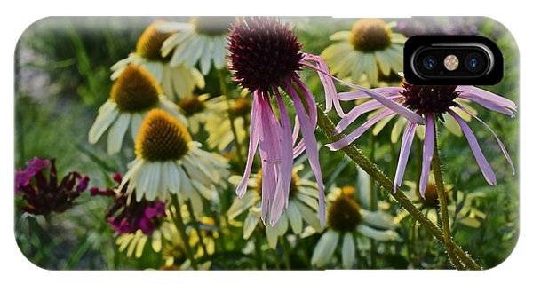 2015 Summer At The Garden Coneflowers IPhone Case