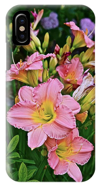 2015 Summer At The Garden Daylilies 1 IPhone Case