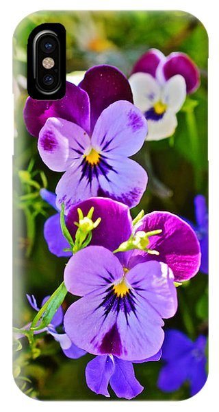 2015 Summer's Eve At The Garden Pansy Totem IPhone Case