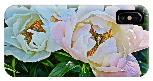 2015 Summer's Eve At The Garden White Peony Duo IPhone Case
