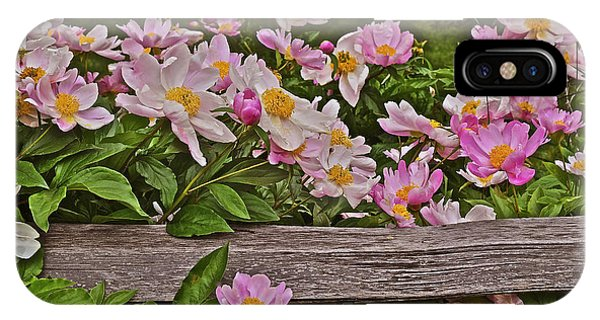 2015 Summer's Eve Front Yard Peonies 1 IPhone Case