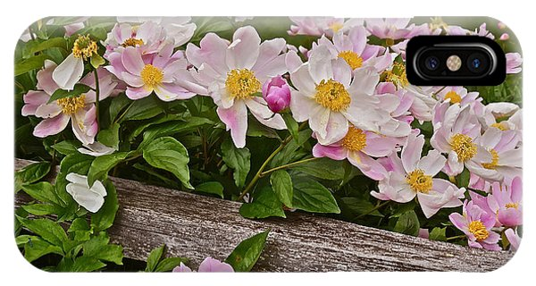 2015 Summer's Eve Neighborhood Garden Front Yard Peonies 3 IPhone Case