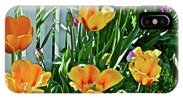IPhone Case featuring the photograph 2018 Acewood Tulips Against The White Fence 1 by Janis Nussbaum Senungetuk