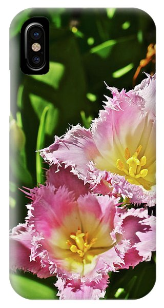 IPhone Case featuring the photograph 2018 Acewood Tulips Fringed Beauties by Janis Nussbaum Senungetuk