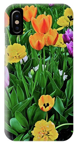 IPhone Case featuring the photograph 2018 Acewood Tulips Galore by Janis Nussbaum Senungetuk