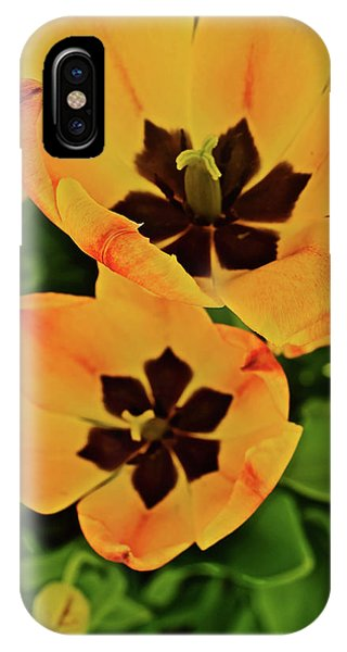 IPhone Case featuring the photograph 2018 Acewood Tulips Yellow Blooms by Janis Nussbaum Senungetuk