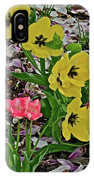 IPhone Case featuring the photograph 2018 Vernon Tulips 2 by Janis Nussbaum Senungetuk