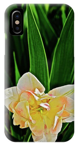IPhone Case featuring the photograph 2018 Vernon Tulips 4 by Janis Nussbaum Senungetuk
