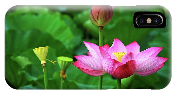 IPhone Case featuring the photograph Blossoming Lotus Flower Closeup by Carl Ning