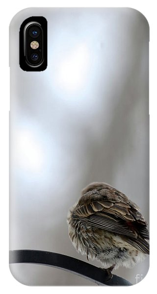 25 Degrees IPhone Case