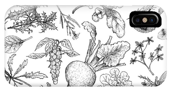 Mustard iPhone Case - Hand Drawn Of Leafy And Salad Vegetable by Iam Nee